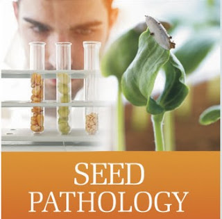 Seed health testing techniques