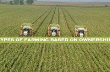types of farming based on ownership