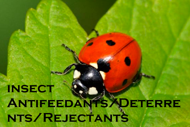 Antifeedants insect control