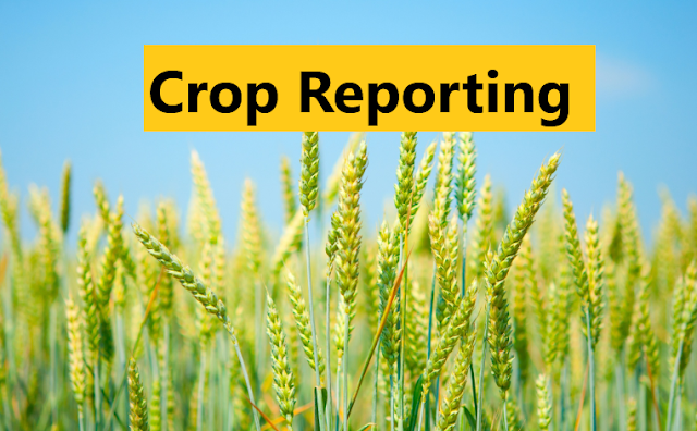 Crop Reporting (Definition, Objectives, and Procedure)