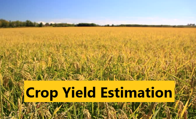 Crop Yield Estimation (Biological yield and economic yield)