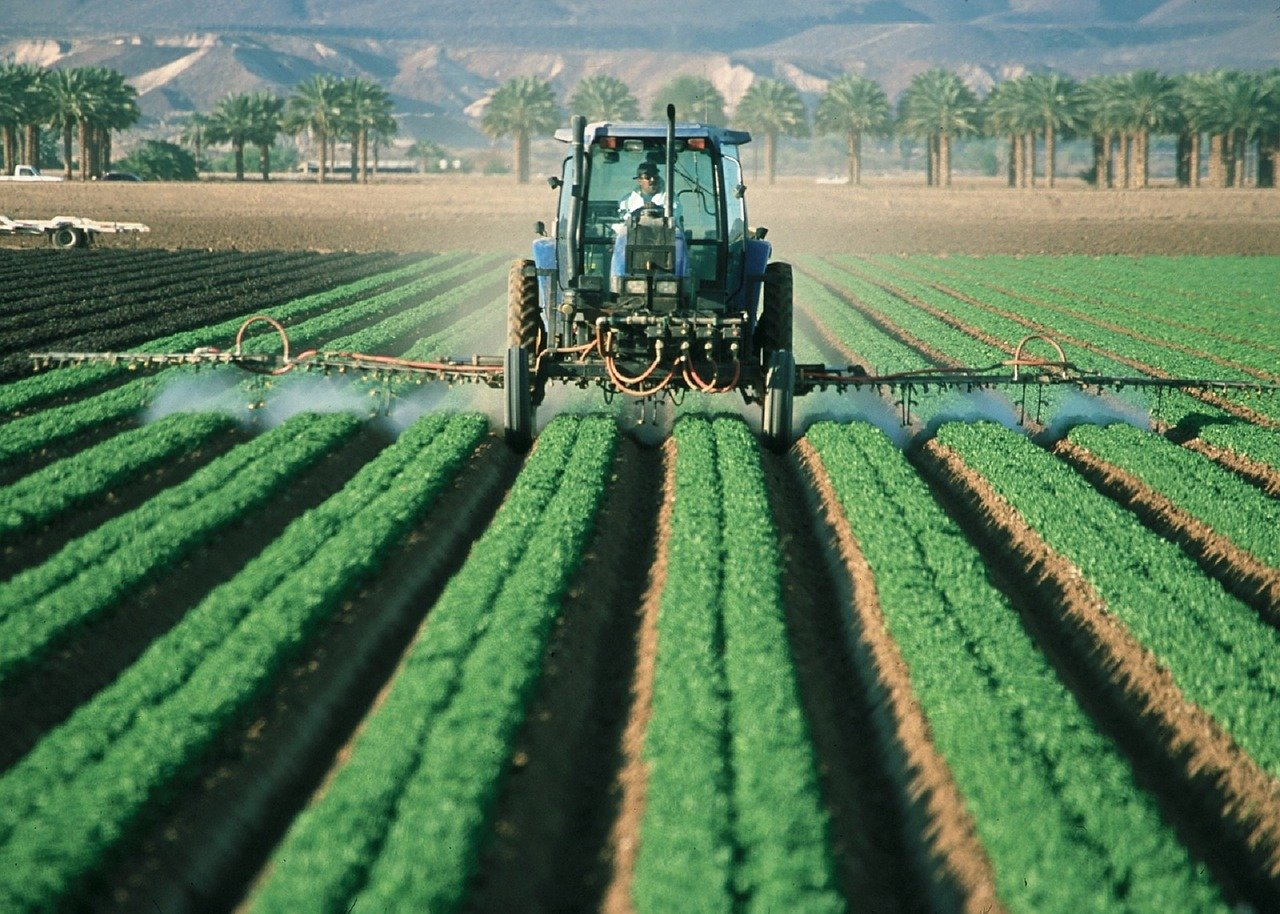 Factors Influencing Cropping Pattern