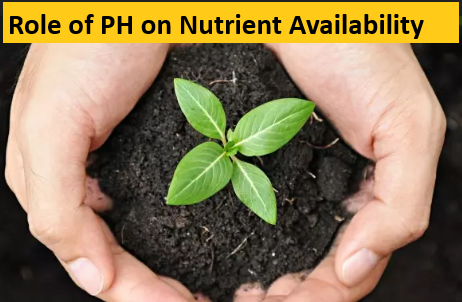 Role of PH in soil Nutrient Availability