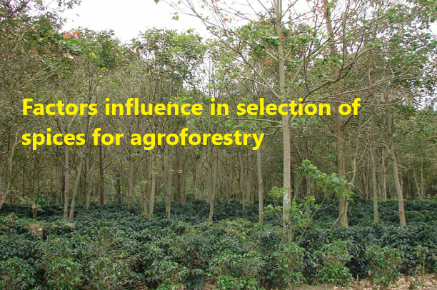 selection of agroforestry plants