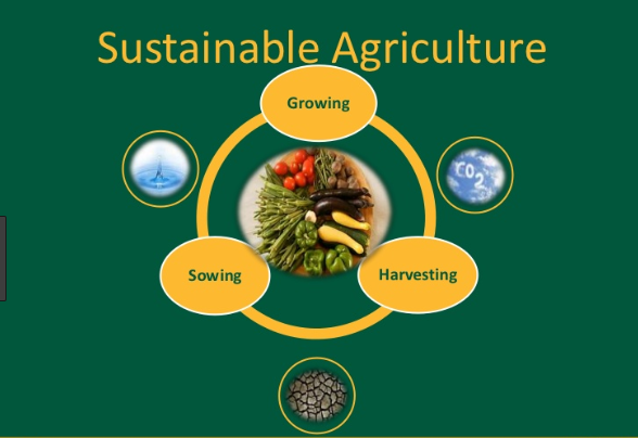 Sustainable Agriculture and Criteria of Sustainable agriculture