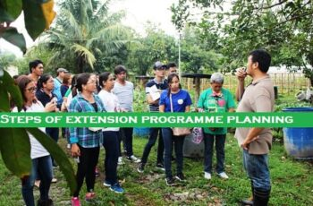 steps of extension programme planning