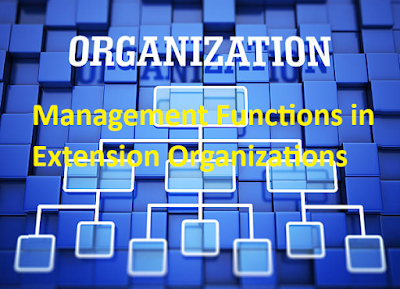 Management Functions in Organization