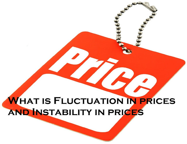 What is Fluctuation in prices and Instability in prices