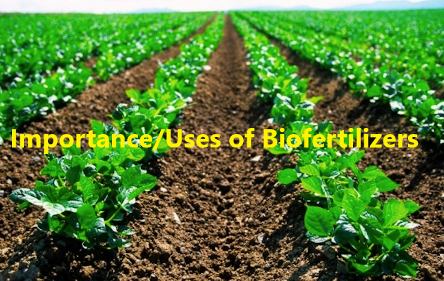 Importance Uses of Biofertilizers