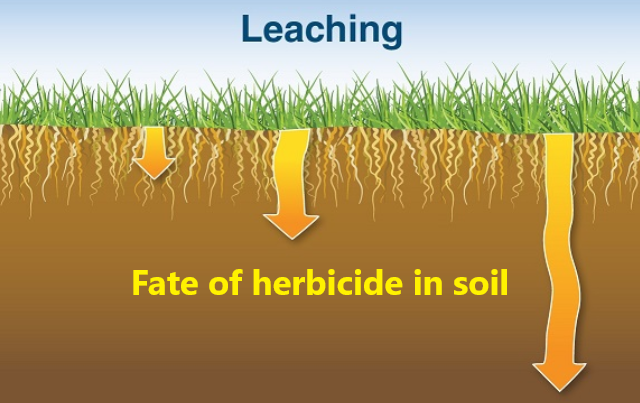 Fate of herbicide in soil