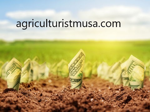 Agribusiness system concept with background