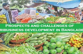 Prospects and challenges of Agribusiness development in Bangladesh